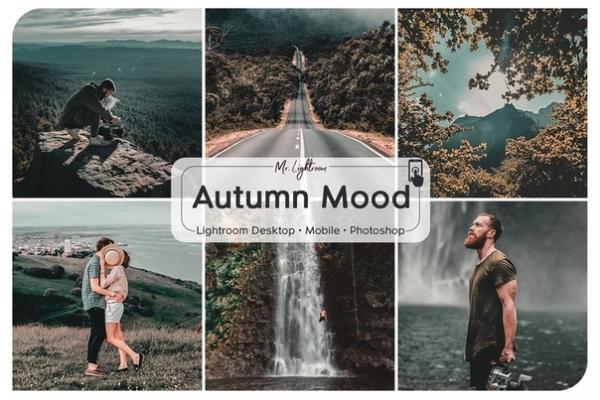 Preset Autumn mood (desktop / mobile) for lightroom