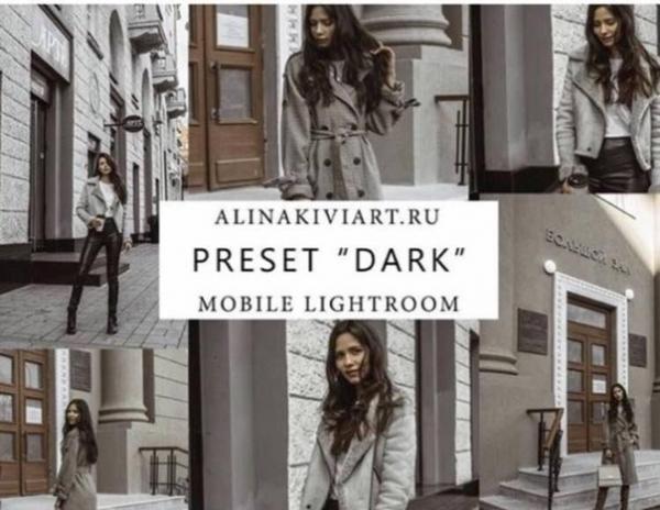 Preset Style food for lightroom