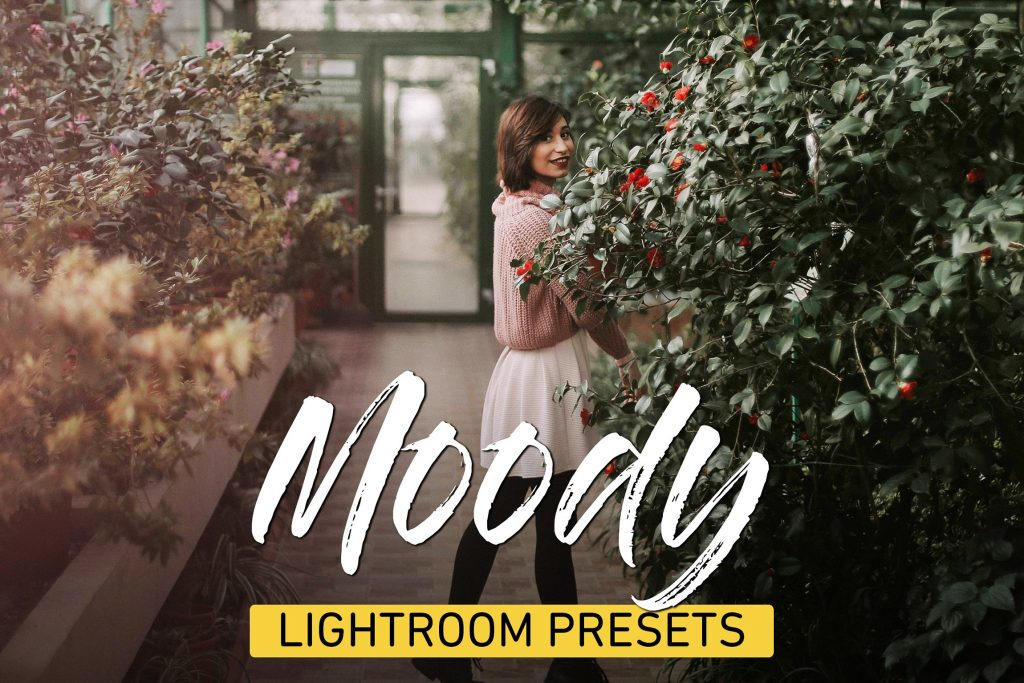 Preset Moody Lightroom Presets Bundle for lightroom