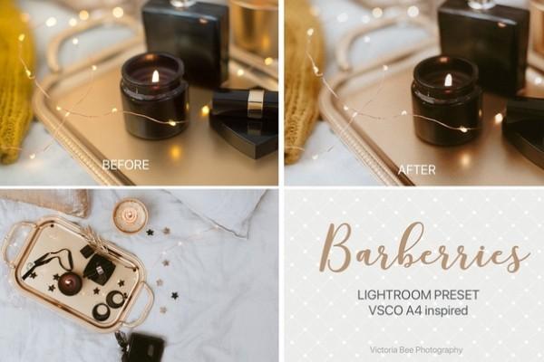 Preset VB-Barberries for lightroom
