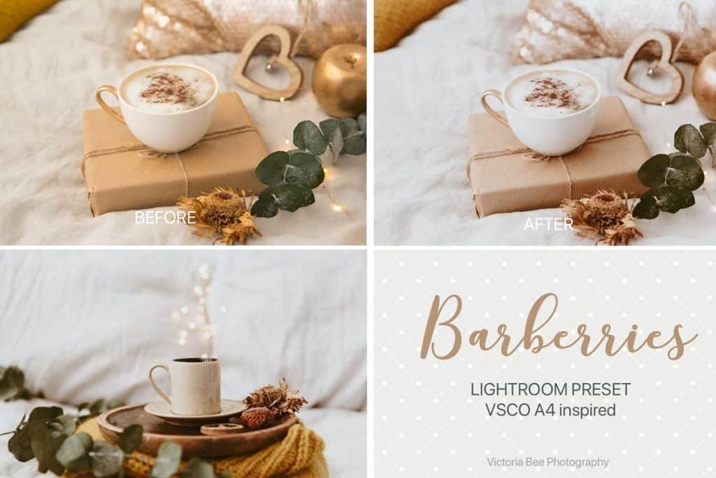 Preset BARBERRIES VSCOCam A4 LR for lightroom