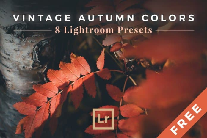 Preset Vintage Autumn Colors for lightroom
