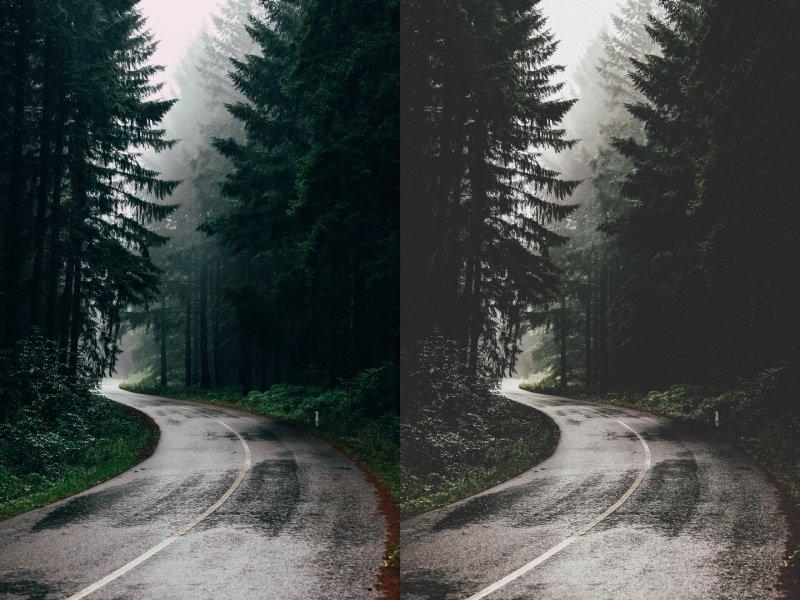 Preset Forest for lightroom