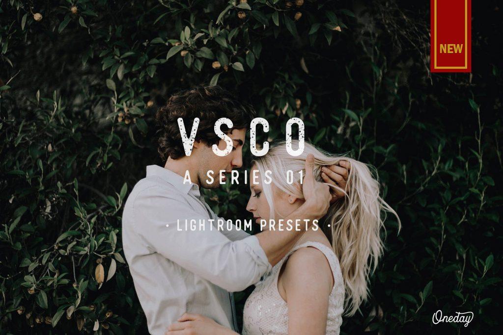 Preset VSCO A Series 01 Lightroom Presets for lightroom