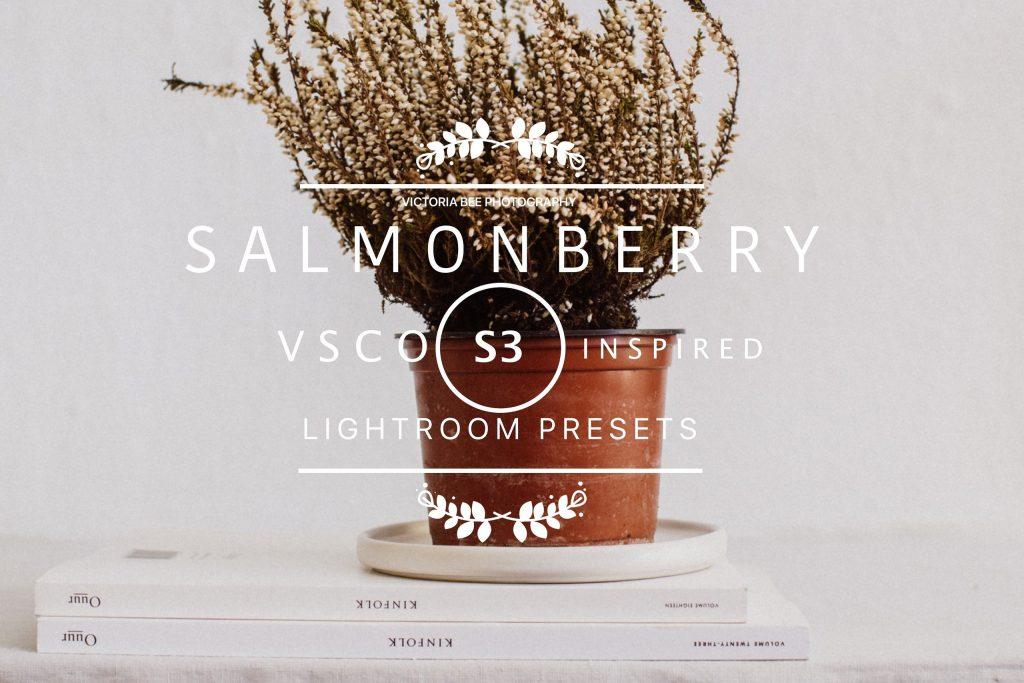 Preset SALMONBERRY VSCO Cam S3 LR presets for lightroom