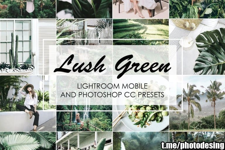 Preset Lush Green Lightroom Presets for lightroom