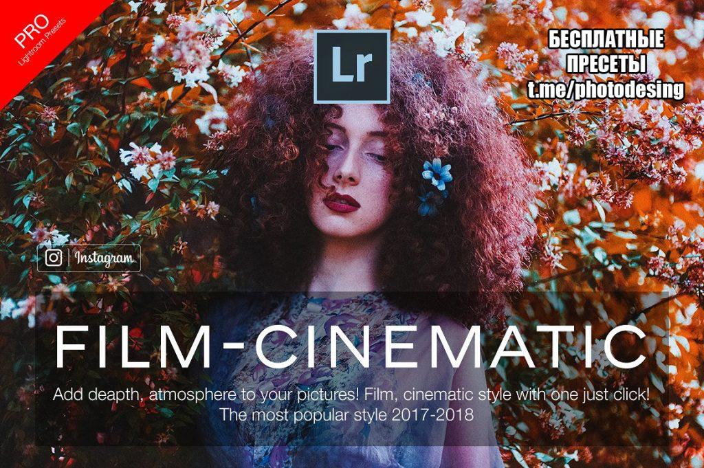 Preset Film Lightroom Presets Portrait for lightroom