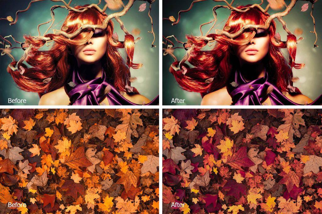 Preset 4 Seasons LR Presets for lightroom