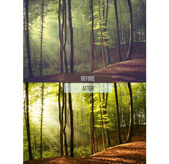Preset 269 Premium Landscape Presets for lightroom