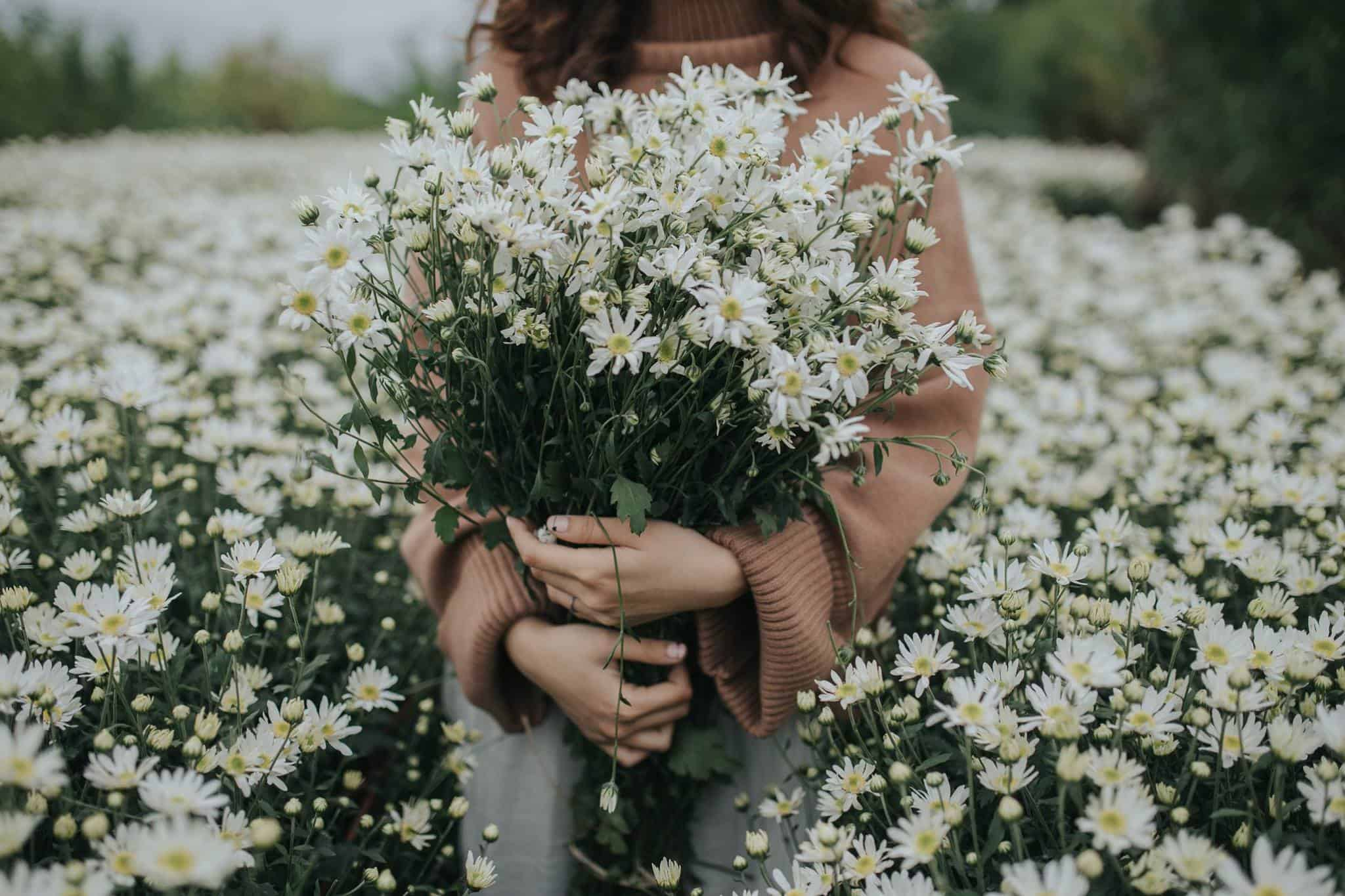 Картинка девочка с букетом ромашек