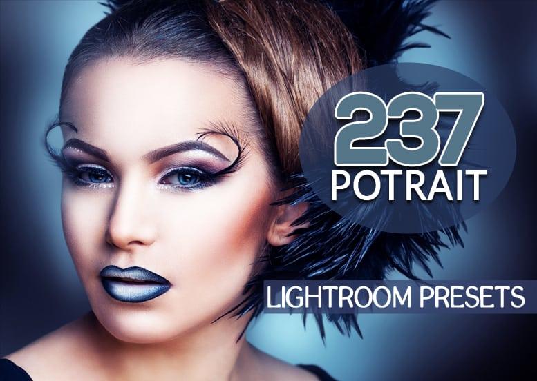 Preset 237 Premium Potrait Preset for lightroom
