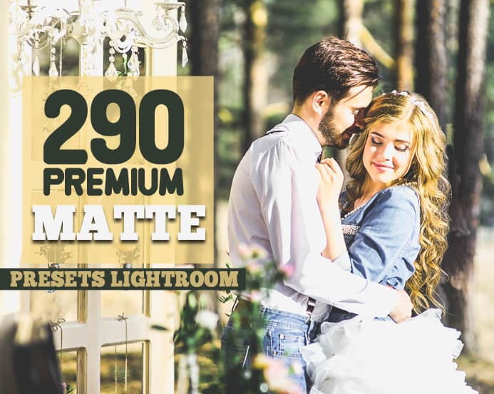 Preset 290 Premium Matte Preset for lightroom