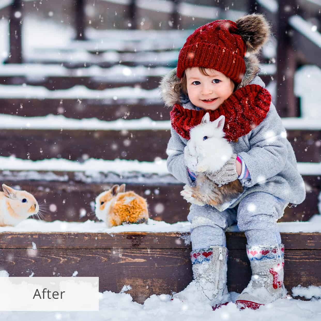 Preset Snow Shine for lightroom