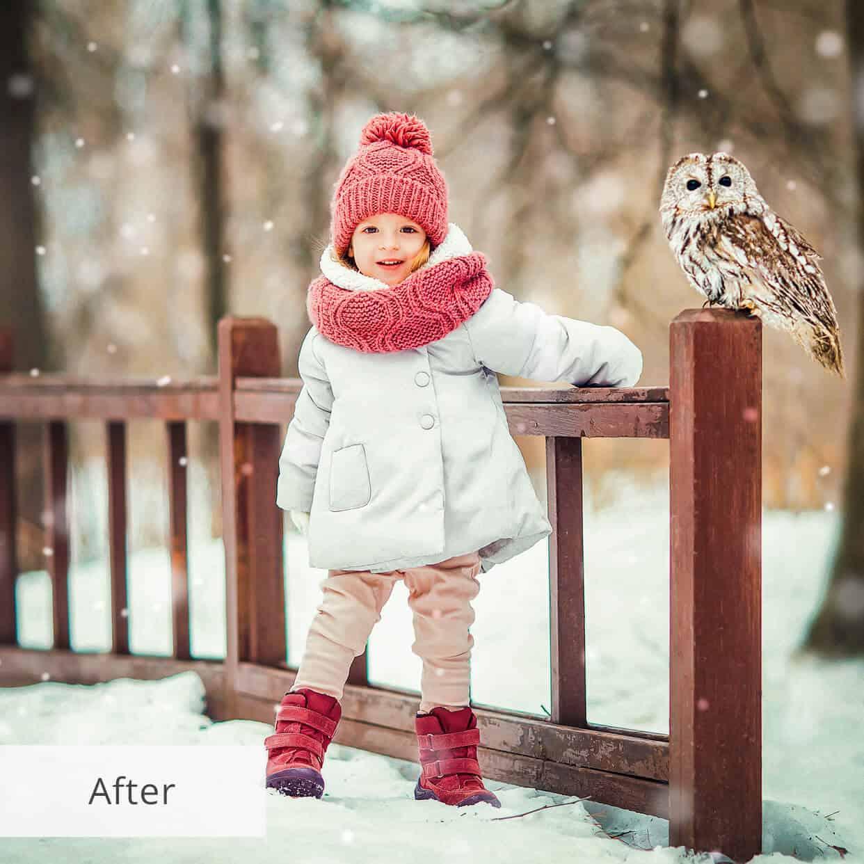 Preset Snow Dark for lightroom