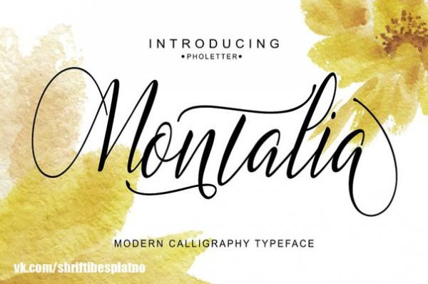Preset Montalia Script for lightroom